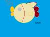 14_fish4
