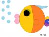 16_fish2
